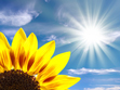 Luz solar-VEPLUS_Limpiagafas_Limpia_anteojos_eyeglass_cleaner